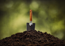 Tko pod drugim jamu kopa…